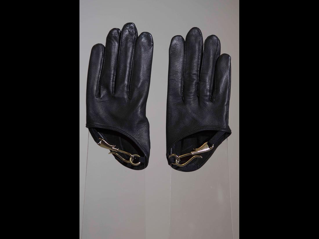 gloves110